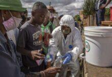 Photo of Zero Deaths as Four New Coronavirus Cases Emerge